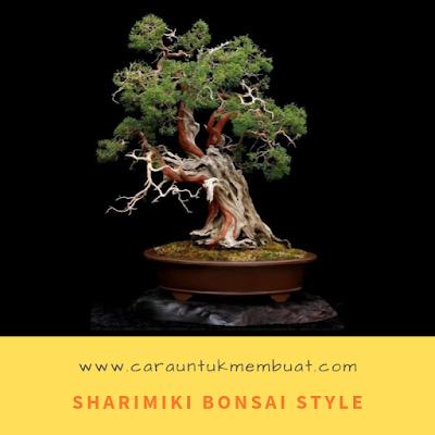 Sharimiki  Bonsai Style