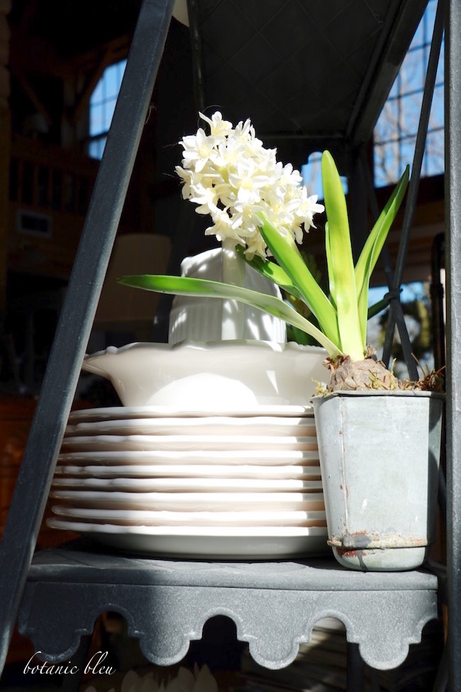 white-dishes-and-faux-white-hyacinth-on-metal-plant-stand
