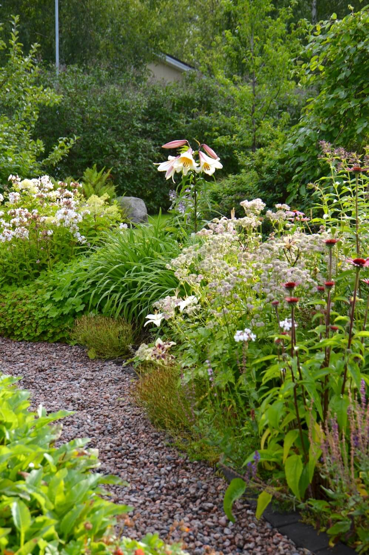 puulilja-cottage-garden