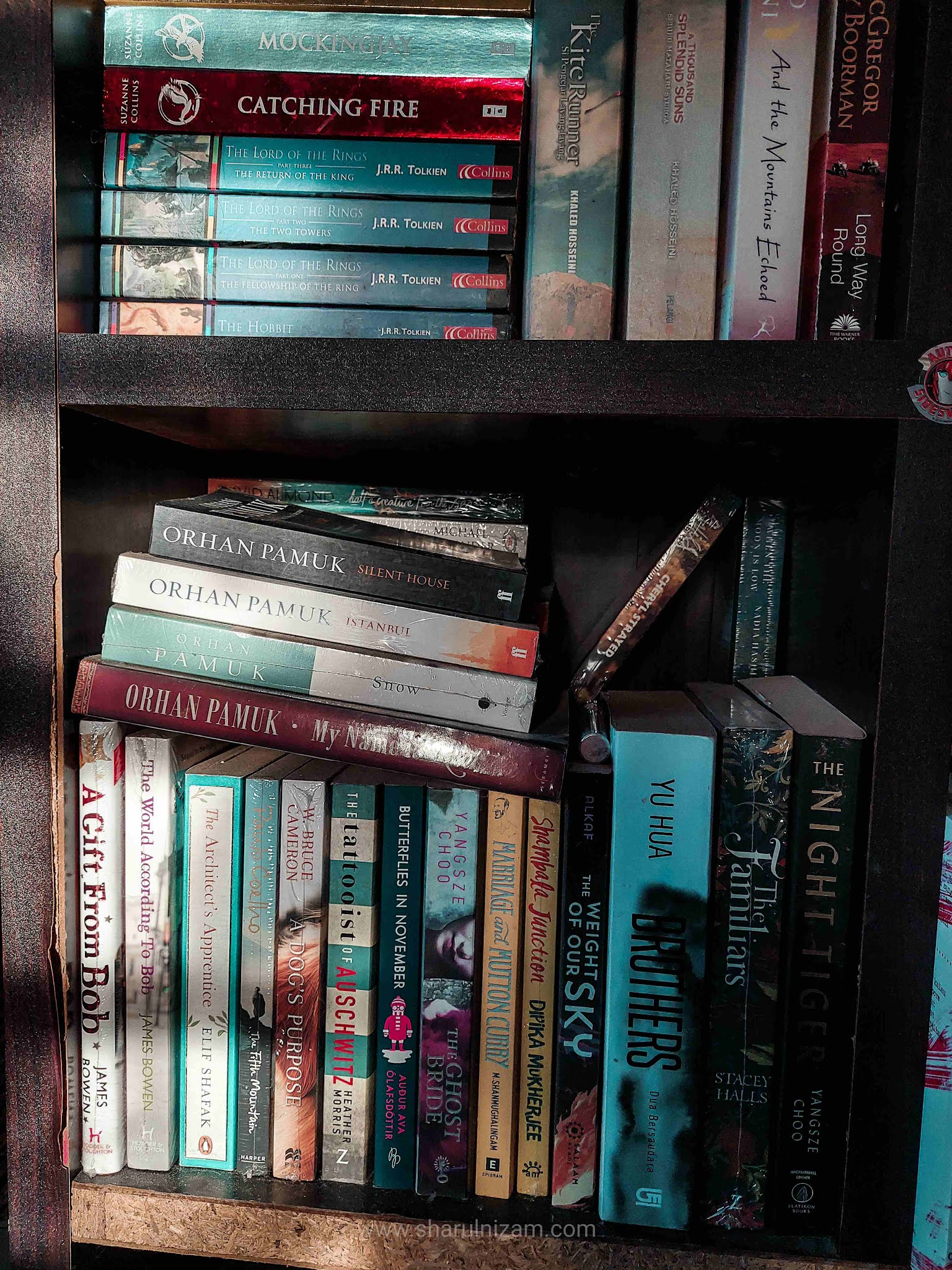 Satu Seni Memilih Buku Seterusnya Untuk Dibaca