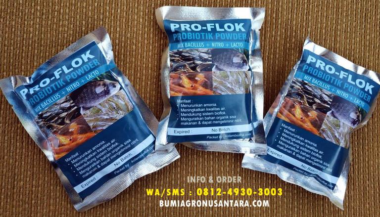 probiotik ikan, probiotic budidaya ikan, probiotik PROflok, proflok probiotik powder, probiotik powder,