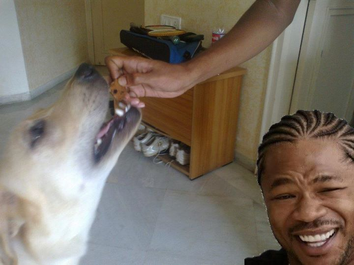 Yo dawg cookie