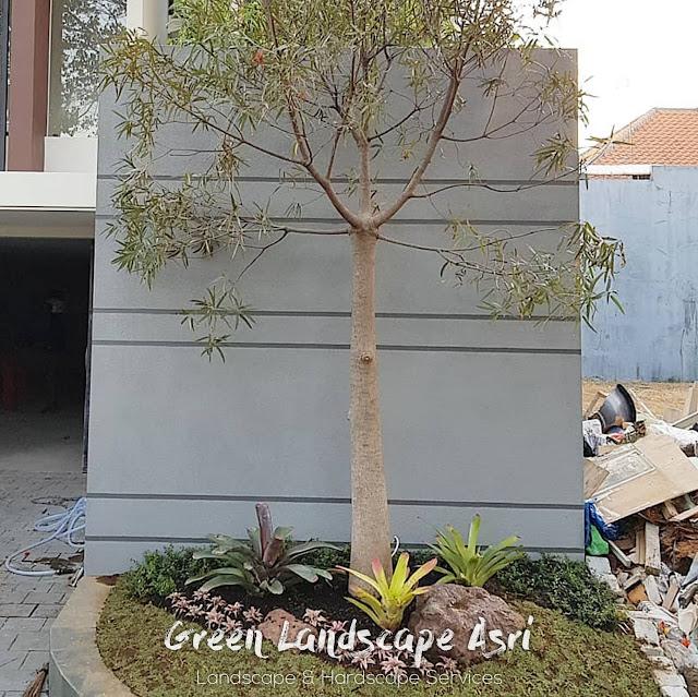Jasa Renovasi & Perawatan Taman di Surabaya