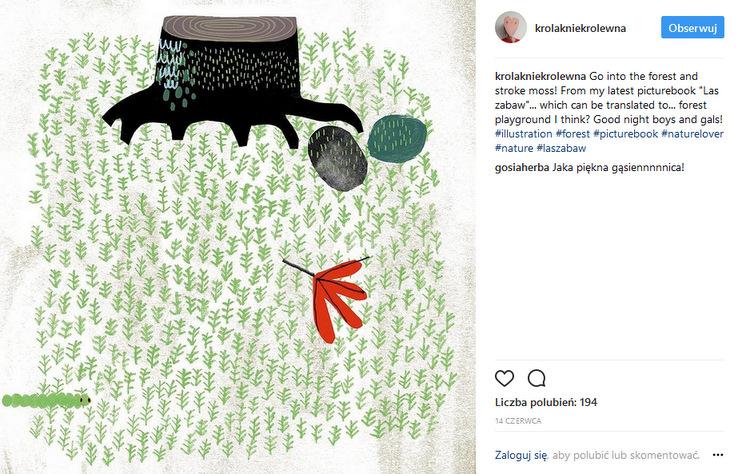https://www.instagram.com/krolakniekrolewna/