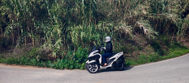 Yamaha tricity en curva