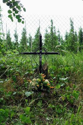 Aleja lipowa - przydrożny krzyż