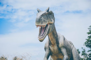 Horned Dinosaur - Photo by Alvaro Reyes on Unsplash.com