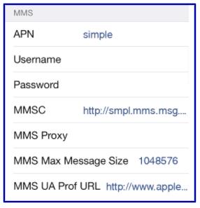 Simple Mobile Data Settings