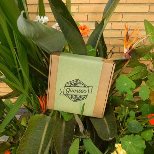 Cultiva tu comida en pequeños contenedores y ten acceso a las fichas de las plantas con solo hacer un clic con tu móvil