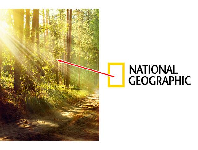 دلالة شعار ناشيونال جيوغرافيك (National Geographic )