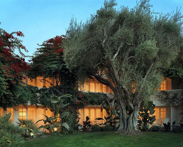 the peak of tr s chic jonathan adler 39 s parker palm springs. Black Bedroom Furniture Sets. Home Design Ideas