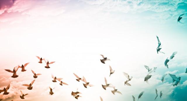 700 Kata-Kata Mutiara yang Menginspirasi dan memotivasi