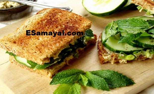 புதினா சீஸ் சாண்ட்விச் செய்வது | Mint Cheese Sandwich Recipe !