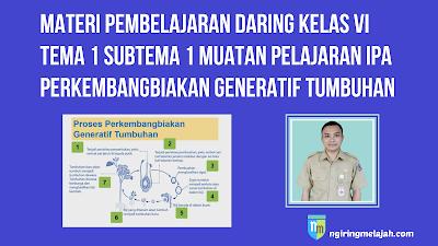 Materi IPA Kelas VI Tema 1 Subtema 1 - Perkembangbiakan Generatif Pada Tumbuhan