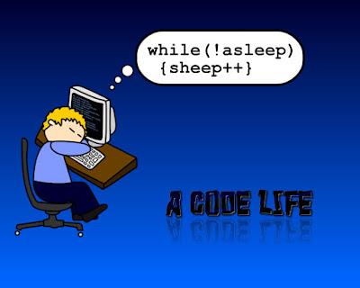 belajar coding pemula