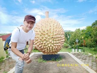 """""""cantiknya alam agrowisata durian waduk mini banjaroya"""""""
