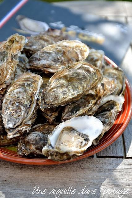huître-creuse-Le gall-Plougastel-Bretagne