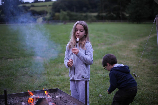 roasting mashmallows