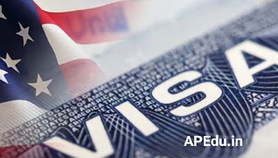 Let us know how many types of visas there are and what VISA means.