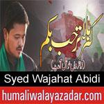 https://humaliwalaazadar.blogspot.com/2019/08/syed-wajahat-abidi-nohay-2020.html