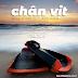 Chân vịt – giày trượt của dân bơi (Phần 2)