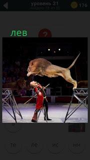470 слов. все просто лев в цирке прыгает с тумбы на тумбу 21 уровень