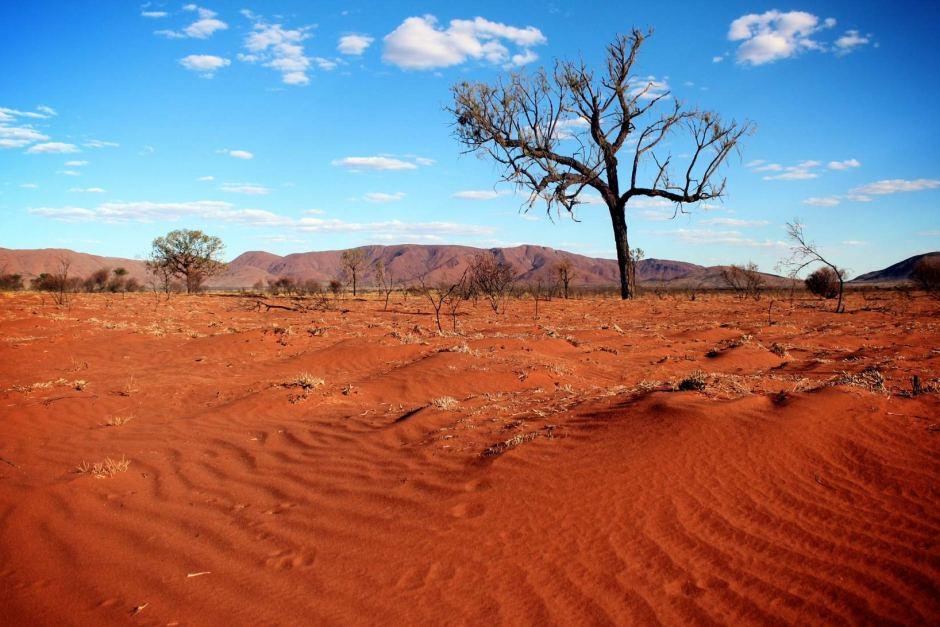 Hot And Dry Desert Biome