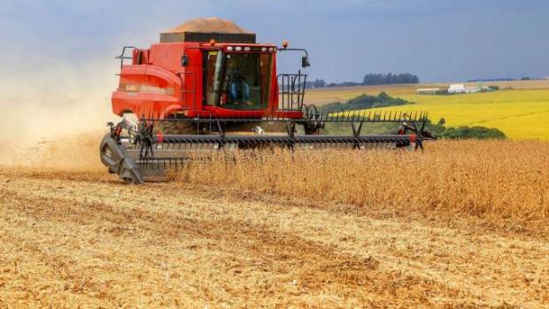 Soja ocupa um quarto do território estadual e é exportada para mais de 20 países