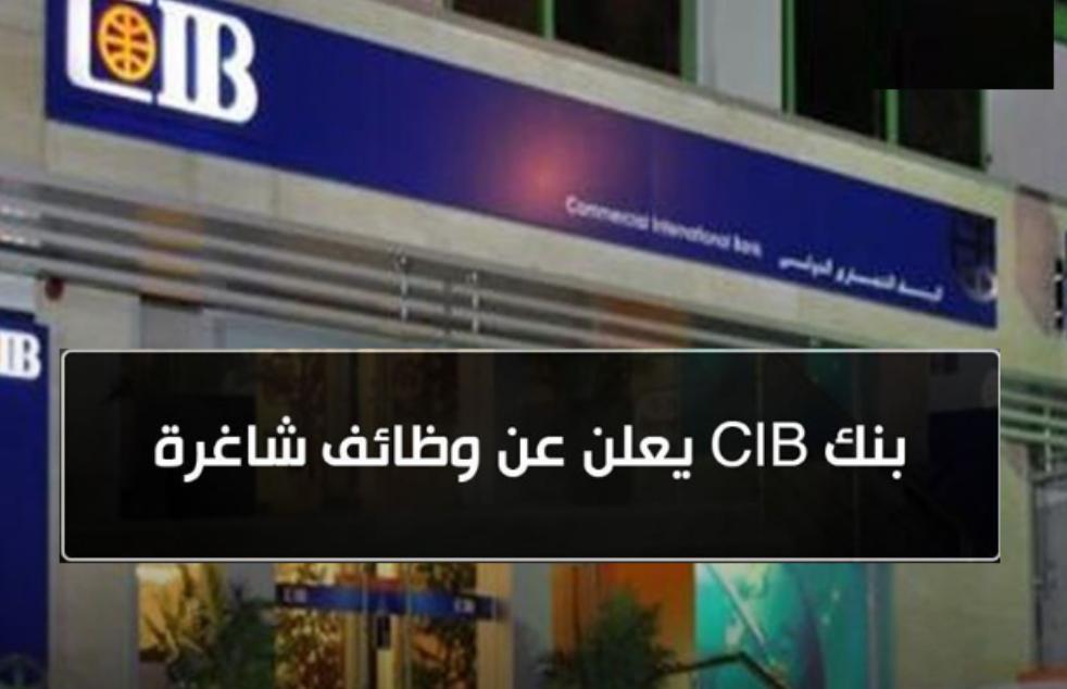 وظائف بنك CIB للمؤهلات العليا بمختلف فروع المحافظات - التقديم الكترونى