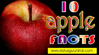 Apple Facts in Hindi  Health Benefits of Apple in Hindi  Status Guru Hindi