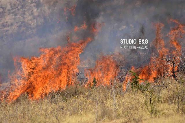 Φωτιά μικρής έκτασης στην περιοχή Διπόταμο στο Άργος