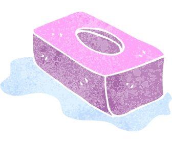 Como Fazer Pedra Sanitária Com Sabonete Phebo