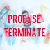 Produse Terminate - Octombrie 2016