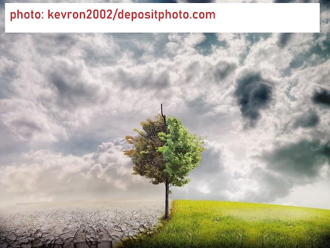 Mit tehetsz Te a klímaváltozás ellen? - 16. rész: Gondolkodj globálisan, cselekedj lokálisan