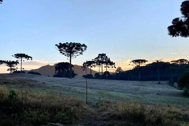 Massa de ar frio e seco causa geada ampla no Paraná