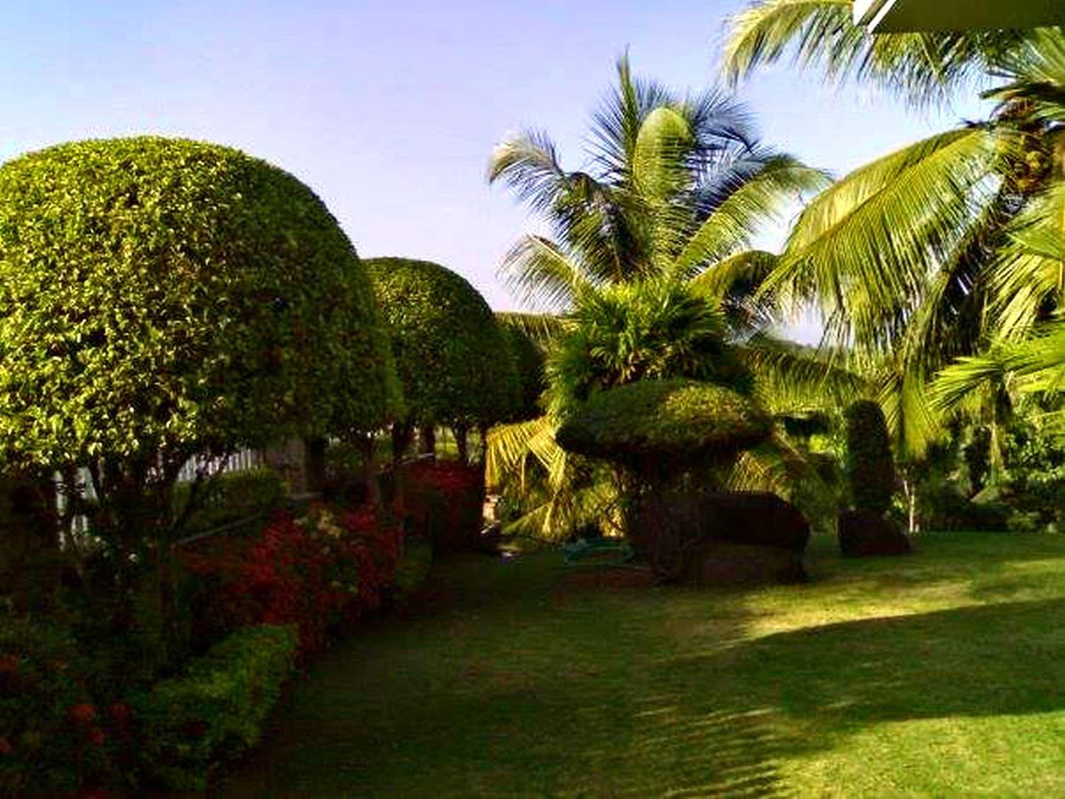 Kerala style landscape design photos - Kerala home design