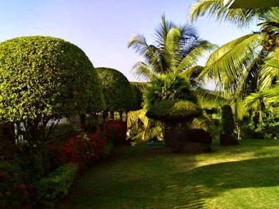 landscaping kerala homes