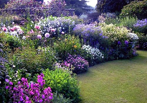 Jardín Y Terrazas Plantas De Jardín Diseño Y Decoración