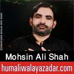 https://www.humaliwalayazadar.com/2017/01/mohsin-ali-shah-naqvi-nohay-2016-to-2018.html