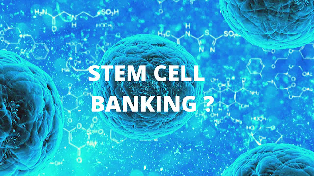 Stem Cell - An Introduction !