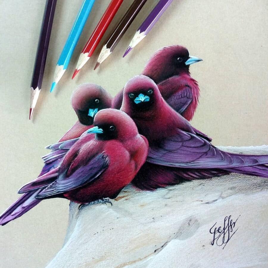 07-Bele-Birds-Drawings-www-designstack-co