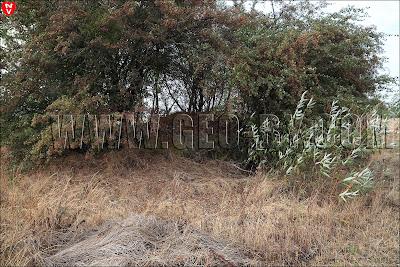 Первый найденный польский бункер у деревни Набережная