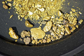 garimpo de pepitas de ouro