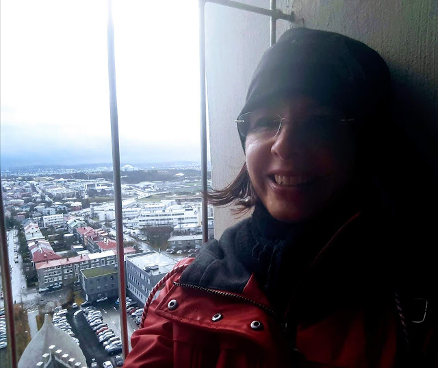 View from Hallgrimskirkja over Reykjavik city