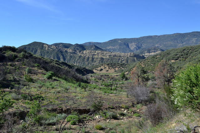 open canyon with drying creek