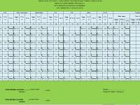 Contoh Format Taraf Serap Otomatis Anti Bocor