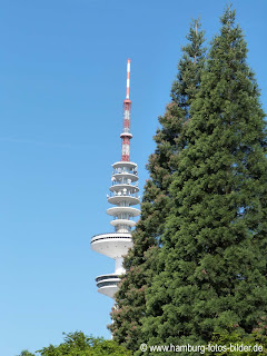 Fersehturm Hamburg, Spitze, Bäume