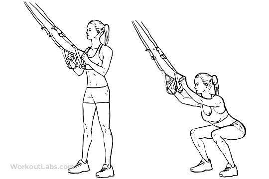 Cable Squats