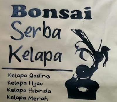 Download Siluet Bonsai Kelapa Dalam Bentuk CorelDraw