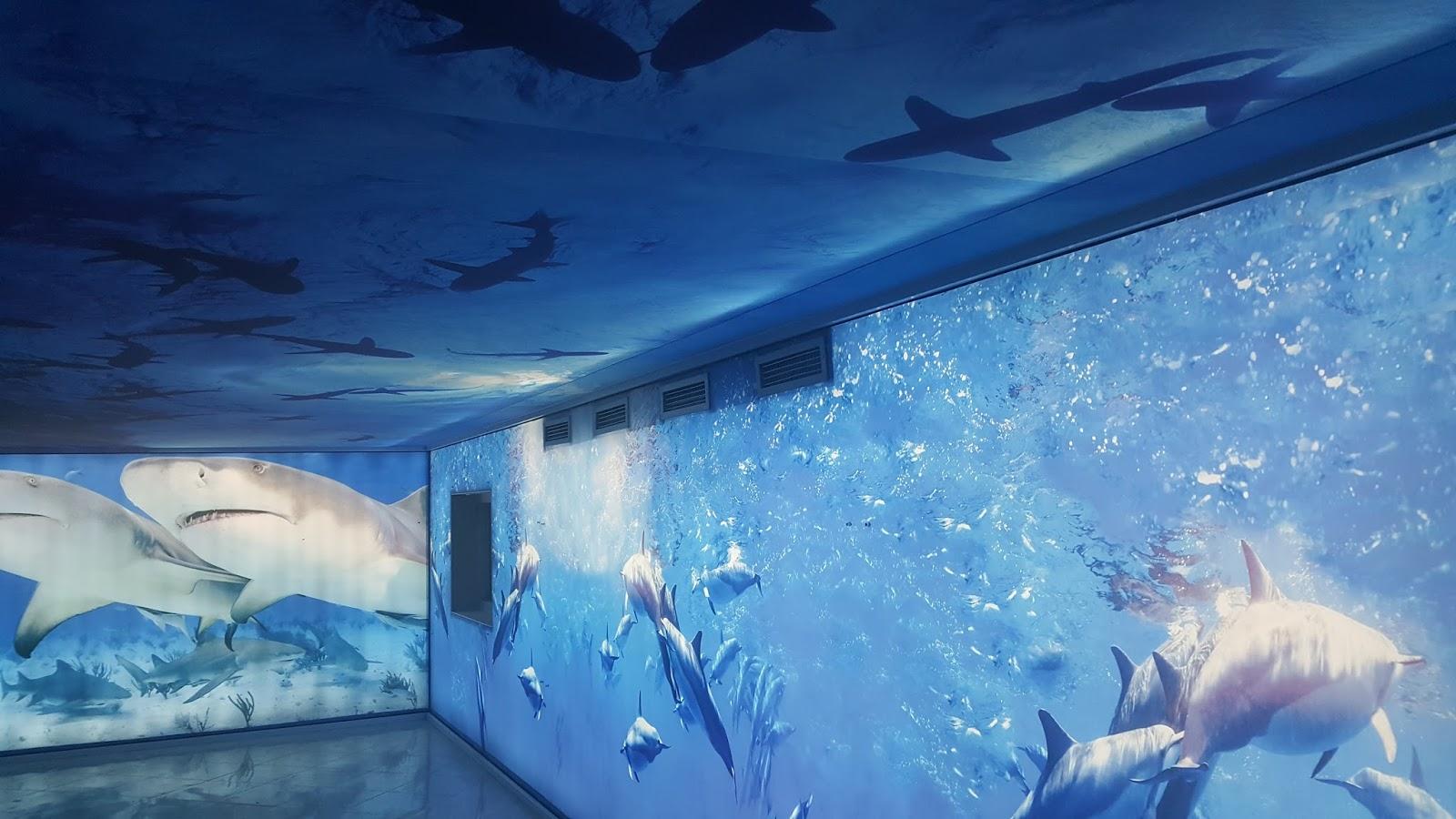 Plafond et mur tendu imprim tanger maroc for Faux plafond translucide